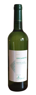 Domaine Allemand - Orcanette