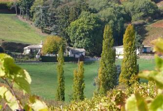 Vue depuis le vignoble du château de Javernand