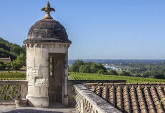 Vue du Château de La Rivière