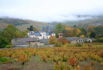 Brume au Château d'Emeringes