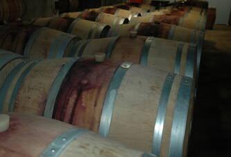 Barriques de vin rouge du domaine des Roques de Cana