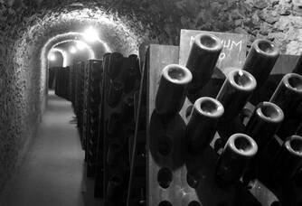 Dans la cave du Champagne Philippe Gonet