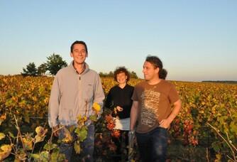 Coucher de soleil dans les vignes de la maison Fleury