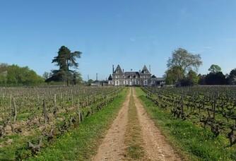 Le vignoble du Château de Bois-Brinçon